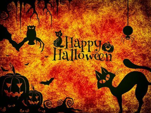 Letture per una notte di Halloween da brividi